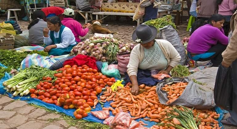 AMAZONAS REGISTRA UN 84.9% DE INFORMALIDAD LABORAL